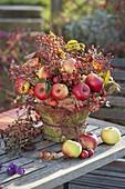 Herbstgesteck aus Äpfeln (Malus), Rosa (Hagebutten) und Rubus