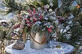 Gefrosteter Winterstrauss aus Pinus (Kiefer), Picea (Fichte) mit Zapfen