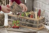 Holzkiste mit Verkleidung aus Rinde als Aufbewahrungsbox für Samen