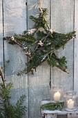 Stern aus Apfelzweigen und Tannengrün als Weihnachtsdeko