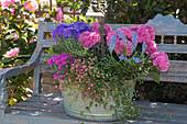 Zinkwanne mit Hortensien und Stauden bepflanzt