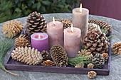 Schneller Adventskranz aus Zapfen von Pinus (Kiefer) und Picea (Fichte)