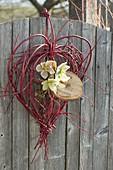 Herz aus Zweigen von Cornus alba 'Sibirica' (Rotholz Hartriegel)