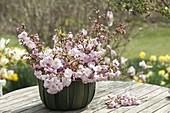 Strauss aus Prunus sargentii 'Accolade' (Frühe Zierkirsche)
