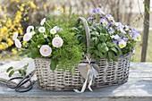 Geschenkkorb mit Kräutern und essbaren Blüten