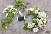 Kranz aus Gänseblümchen und Kräutern binden