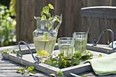 Maiengruen : Tee aus Betula (Birke) in Gläsern und Krug auf Holz-Tablett