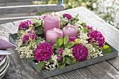 Duftender Kranz auf Zink-Schale : Rosa 'Rose de Resht' (Damascener-Rose)