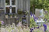 Gartenhaus mit blauen Blumen