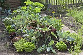 Huegelbeet im Gemüsegarten anlegen