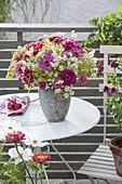 Sommerstrauss mit Zinnia (Zinnien), Fenchel - Blüten (Foeniculum)