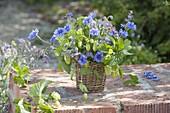 Kleiner Strauss in Korbvase auf Gartenmauer : Centaurea cyanus (Korblumen
