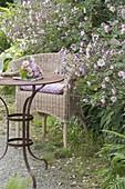 Kleiner Sitzplatz mit Korbsessel und Tisch am Beetrand, Anemone hupehensis