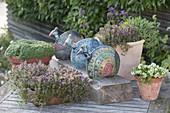 Keramik - Pfaue auf Holzbalken, verschiedene Thymian-Sorten (Thymus)