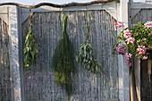 Kleine Terrasse mit Sichtschutz als Arbeitsplatz am Gartenhaus