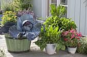 Terrasse mit Salaten und Gemüse in grünen Holz-Fässern