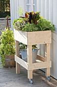 Rollbares Hochbeet auf Balkon selbst bauen und mit Gemüse bepflanzen