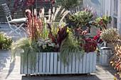 Selbstgebauter, fahrbarer Holzkasten mit Carex 'Frosted Curls' (Seggen)