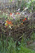 Kompostlege aus Baustahlgitter bauen