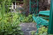 Geschuetzte Bank am Gartenhaus zwischen Alchemilla (Frauenmantel), Physocarpus opulifolius 'Diabolo' (Dunkelrote Blasenspiere), Hosta (Funkie), Topf mit Lobelia (Männertreu) auf Tisch