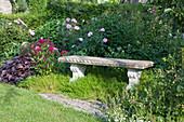 Steinbank im Beet zwischen Rosa (Rosen), Dianthus barbatus (Bartnelken), Heuchera (Purpurglöckchen), Polsterphlox als Bodendecker unter Bank