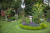 Rundes Beet mit Vogeltränke in gepflegtem Garten