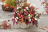 Herbststrauss aus Zweigen mit Fruchtschmuck : Malus (Zierapfel), Rosa