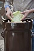 Sauerkraut selbermachen