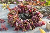 Herbstkranz mit Rosa (Hagebutten), Sedum telephium (Fetthenne)