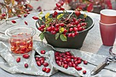 Cut freshly picked rosehips before processing