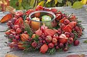 Herbstkranz aus Physalis (Lampions), Malus (Zieraepfeln), Rosa (Hagebutten