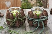Windlichter mit grünen Kerzen, verkleidet mit Zapfen von Picea (Fichte)
