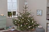 Picea abies (Rotfichte) geschmückt mit Baumkugeln, Sternen, weissen Kerzen