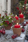 Terracotta-Töpfe als Kerzenhalter, Gaultheria procumbens (Scheinbeere)
