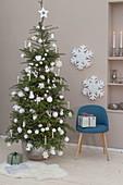 Lebende Abies koreana (Koreatanne) als Weihnachtsbaum