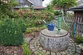 Laendlicher Garten mit Brunnen aus Naturstein gemauert, Schwengelpumpe auf Betondeckel, Rosa (Ramblerrose) überwuchert Holzzaun, Buxus (Buchs) und Lonicera nitida (Heckenkirsche) im Beet mit Rindenmulch