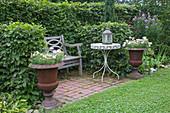 Holzbank geschützt von Hecke aus Carpinus (Hainbuche , Weissbuche) auf kleiner, gepflasterter Terrasse, rostige Blumenspindeln bepflanzt mit Sommerblumen, Tisch, Laterne