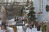 Verschneite Weihnachtsterrasse mit Abies koreana (Koreatanne)