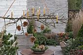 Hängender Zweig mit Zapfen und Kerzen über Terrassentisch