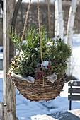 Korbampel mit winterharten Pflanzen