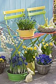 Blau-gelb bepflanzte Osterterrasse mit bunten Klappstuehlen