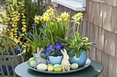 Osterschale mit Narcissus 'Tete a Tete' (Narzissen), Primula veris