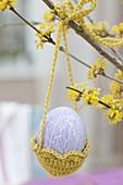 Osterei in gehaekeltem Körbchen an Zweig von Cornus mas (Kornelkirsche)