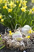 Osternest aus Gräsern gewunden, Osterei mit Botschaft : Frohe Ostern