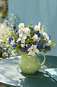 Duftender Fruehlingsstrauss aus Narcissus poeticus (Dichternarzisse)