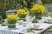 Butterblumen - Gräser - Tischdeko