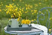 Straeusse frisch gepflückt von der Wiese : Ranunculus acris (Hahnenfuss