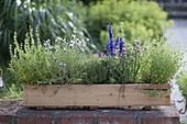 Selbstgebauter Holzkasten mit Kräutern bepflanzt auf Mauer