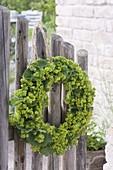 Kranz aus Alchemilla (Frauenmantel) Blüten und Blättern an Gartentor