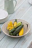 Frisch geerntete grüne und gelbe Zucchini und Blüten in Schüssel